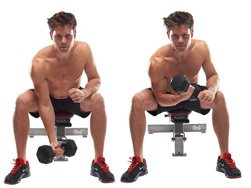 Flexiones de bíceps
