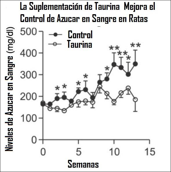 taurine-incrementa-azucar-sangre-en-ratas