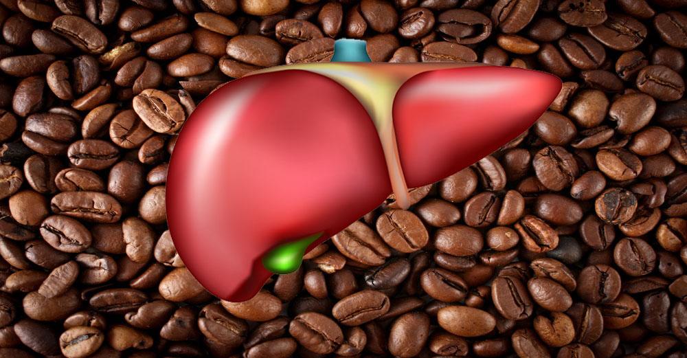 cafe-e-higado