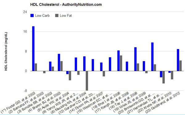 Colesterol HDL en dietas bajas en carbohidratos y grasas, más pequeñas