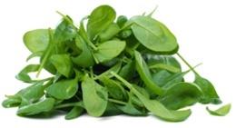 Un montón de hojas de espinaca