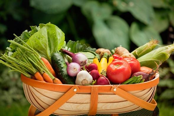 Cesta llena de verduras