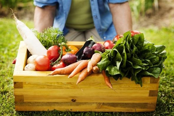 Caja de Verduras del Huerto