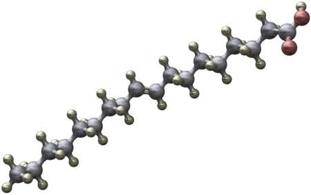 Molécula de ácido graso