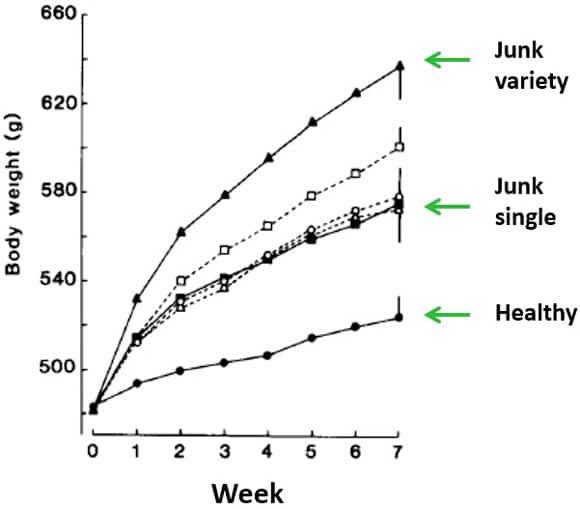 Variedad de alimentos y aumento de peso