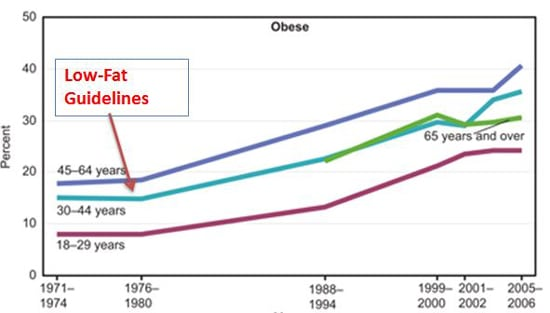 Pautas de bajo contenido de grasas y epidemia de obesidad