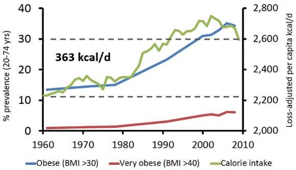 Obesidad y consumo de calorías