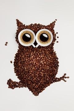 Búho hecho de granos de café