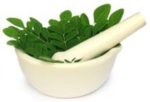 Maja y cuenco con hojas de moringa