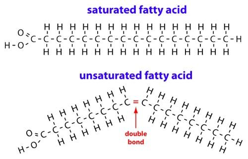 Ácidos grasos saturados vs insaturados