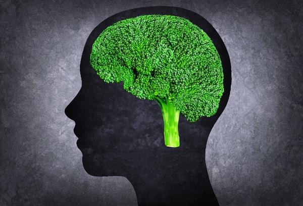 Silueta de cabeza con brócoli como cerebro