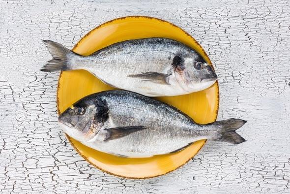 Dos peces dorados en una placa amarilla