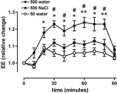 Gráfico que muestra cómo el agua puede estimular el metabolismo