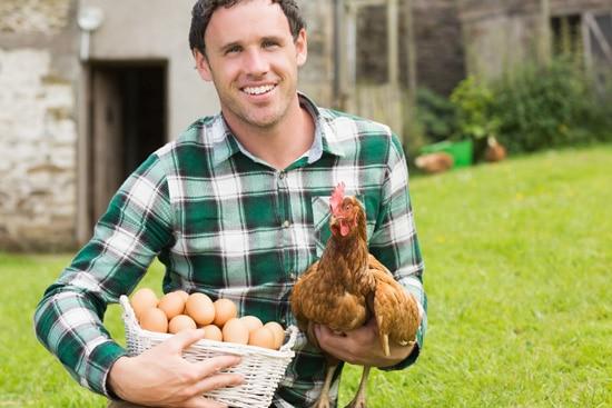 Joven sosteniendo un pollo y huevos